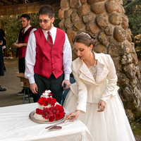 Hutchinson_Swearingen_Wedding-2885